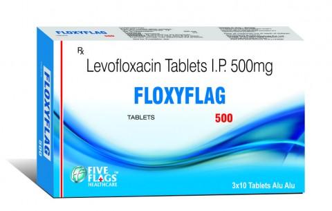 FLOXYFLAG 500
